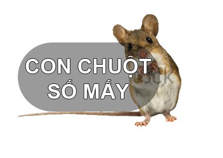 Chuột là số mấy? Mơ thấy chuột nên đánh con gì ăn chắc nhất
