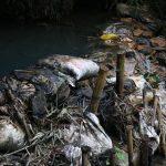Công ty nước sạch Sông Đà tạm dừng cấp nước vô thời hạn?