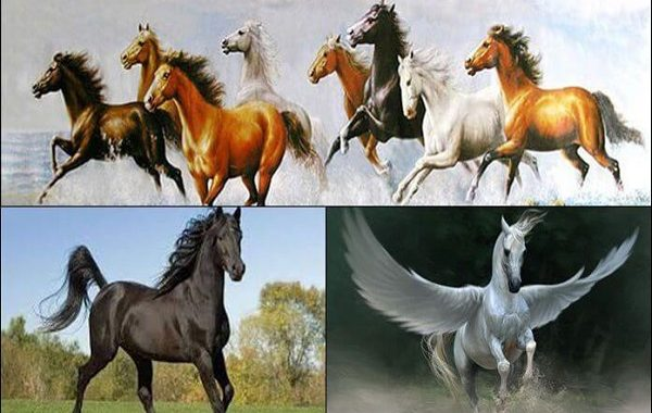Ngủ mơ thấy cưỡi ngựa là điềm báo gì? Mơ thấy cưỡi ngựa đánh con gì?