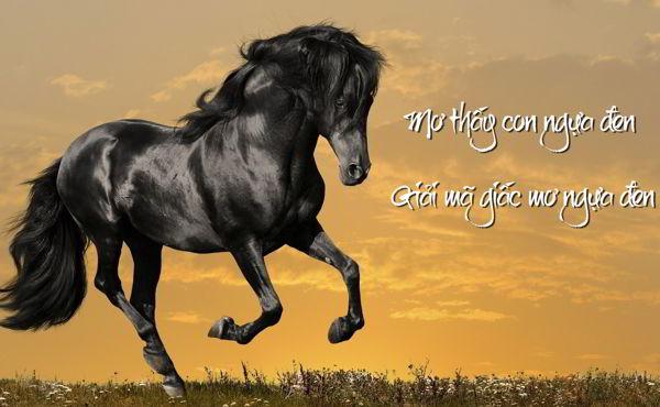 Mơ thấy con ngựa là điềm lành hay dữ? Giải mã giấc mơ thấy ngựa