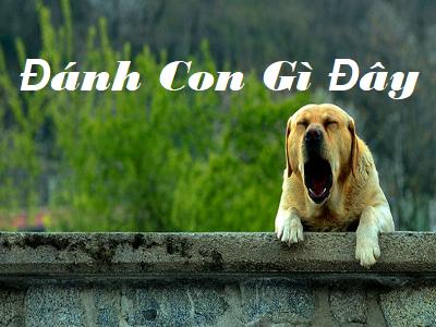 Nằm mơ thấy chó vàng là điềm báo gì? Mơ thấy chó vàng số mấy?