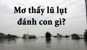 Mơ thấy lũ lụt số mấy? đánh con gì? Nằm mơ thấy lũ lụt là điềm báo lành hay dữ