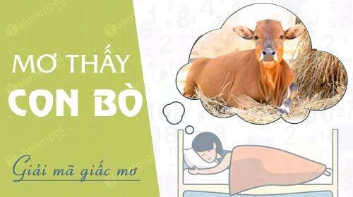 Mơ thấy bò là điềm gì? Ngủ mơ thấy bò đánh con gì? số mấy?