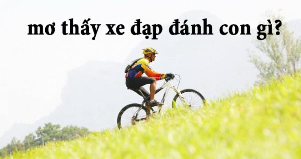 Mơ thấy xe đạp là điềm báo gì? Nằm mơ thấy xe đạp đánh con gì? số mấy?