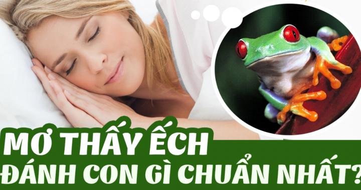 Nằm mơ thấy ếch là điềm gì? Mơ thấy ếch đánh con gì? số mấy?