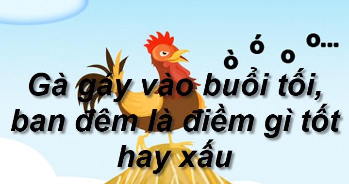 Mơ thấy gà gáy lúc nửa đêm là điềm gì? Mơ thấy gà gáy lúc nửa đêm đánh con gì? số mấy?