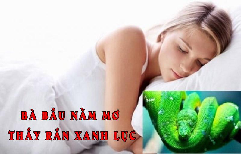 Bà bầu nằm mơ thấy rắn xanh lục là điềm gì?